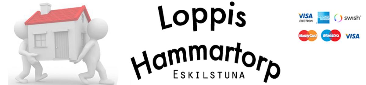 Loppis Hammartorp